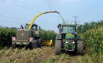m-bkt-harvesting-1